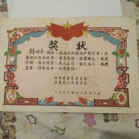 1963年抗洪抢险救灾,奖状