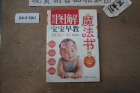 图解宝宝早教魔法书