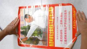 文革宣传画:热烈庆祝毛主席视察天津大学十周年(1968年,天津大学八一三红卫兵,38*52cm)L2
