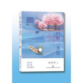 全新正版正版包邮冰心儿童文学奖新锐作家精品馆:河的第三条岸