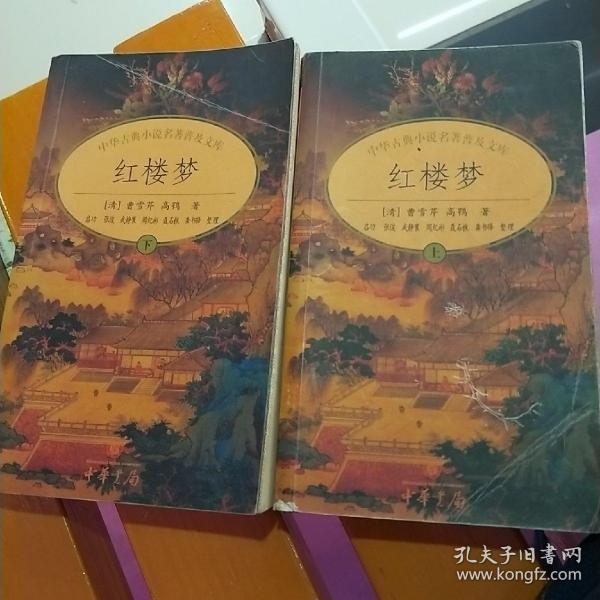 中华古典小说十大名著  全10册