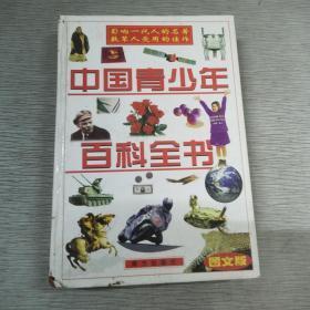 中国青少年儿童百科全书 第五卷