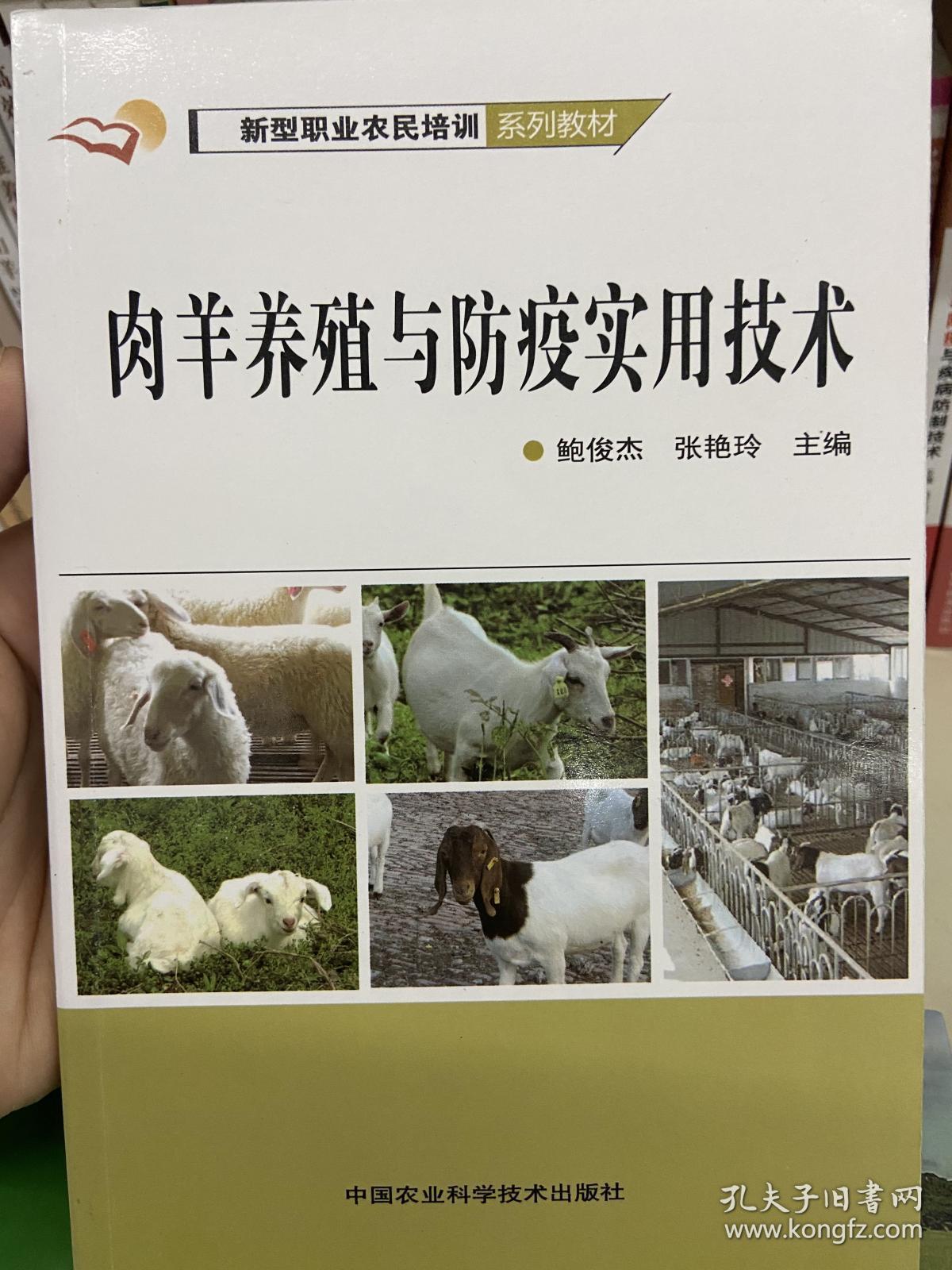 肉羊养殖与防疫实用技术