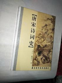 唐宋诗词史