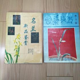 名兰新品鉴赏  国兰新潮稀奇怪 两本合售【兰花专题65】