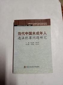 当代中国未成年人违法犯罪问题研究(禁售)