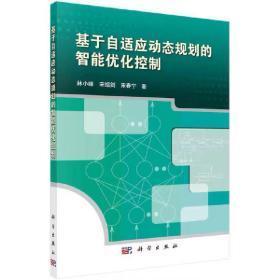 基于自适应动态规划的智能优化控制  林小峰,宋绍剑,宋春宁
