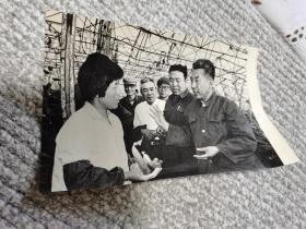 顺义县蔬菜大棚科学实验照片, 背后有说明