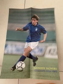 足球海报  1994世界杯西格诺里