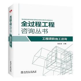 全过程工程咨询丛书 工程项目施工咨询
