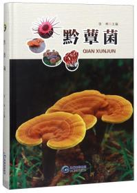 W 黔蕈菌