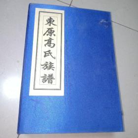 东原高氏族谱 续修 线装全10卷10册 带函套