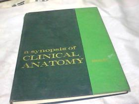 a synopsis of CLINICAL ANATOMY    临床解剖学概要
