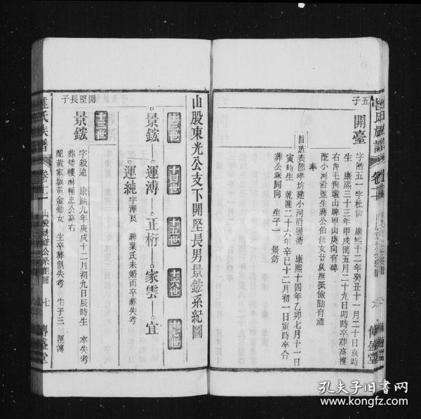 八潭夏氏續修宗譜 [8卷]