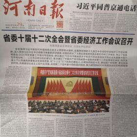 河南日报2020年12月29日