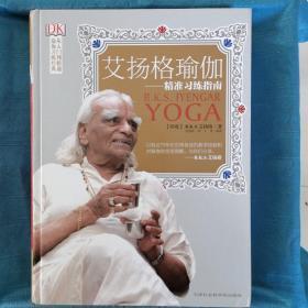 正版艾扬格瑜伽精准习练指南