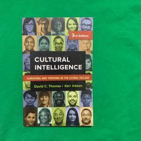Cultural Intelligence Survivng And Thriving In The Global Village