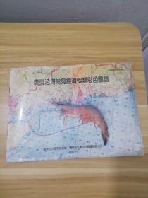 广东沿海常见经济虾类彩色图谱