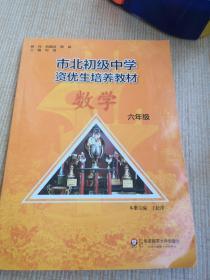 市北初资优生培养教材 六年级数学(修订版)