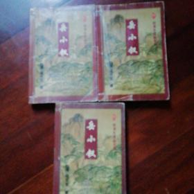 岳小钗(上中下)