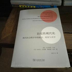 现代性研究译丛: 自反性现代化:现代社会秩序中的政治、传统与美学