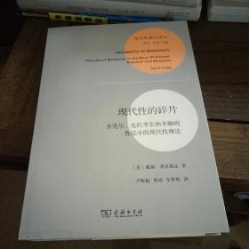 现代性研究译丛:  现代性的碎片:齐美尔、克拉考尔和本雅明作品中的现代性理论