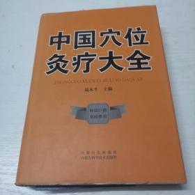 中国穴位灸疗大全(精装本)