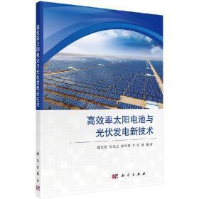高效率太阳电池与光伏发电新技术/魏光普