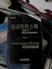 集团管控方略:危机之下集团企业管控释义(第3版)