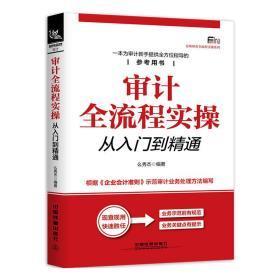 【正版】审计全流程实操从入门到精通 中小企业内部高级审计理论与实务 内部审计实务统计学概论基础 统计学案例准则书籍