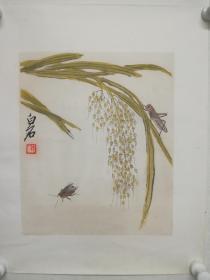 早期木板水印画《草虫》