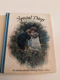 原版立体书special day