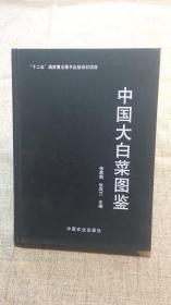 中国大白菜图鉴