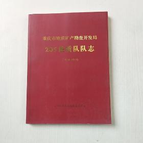 重庆市地质矿产勘查开发局205地质队队志(2004一2014)