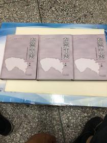 东莞市志 【1979-2000 】上中下册 无光盘