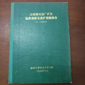 云南澜沧老厂矿区地质填图及成矿预测报告(1:10000)