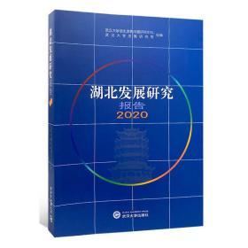 湖北发展研究报告·2020  武汉大学出版社 9787307218246