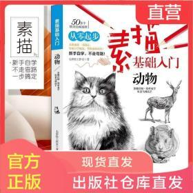 素描基础入门 动物 猫狗等绘画技法从零起步临摹教程零基础自学教
