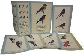美国首席鸟类学家西布利原始水彩插图系列鸟类明信片100组盒装Sibley Backyard Birding Postcards: 100 Postcards (Sibley Birds)
