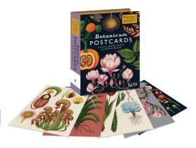 预售凯蒂斯科特植物万物插图明信片五十张礼盒Botanicum Postcards