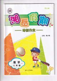 2019正版初中湘岳假期寒假作业第三版数学八8年级人教版无答案