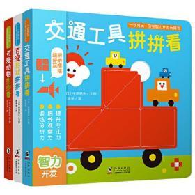 全新正版   一玩再玩.宝宝智力开发玩具书(套装全3册)