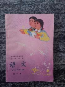 全日制十年制学校小学课本 语文第十册(未使用)