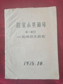1975年山西农学院手稿,山西阳高县<尉家小堡葡萄>一一裁培技术调查