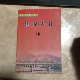 延安文史第十辑 延安岁月(中)