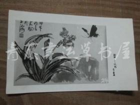 黑白照片一张:国画——花鸟(陈大羽 绘画)蝴蝶花卉