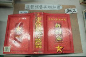 中华人民共和国新刑法实务全书