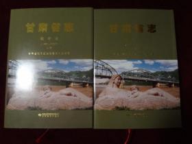 甘肃省志  教育志 上下册(1987——2005)