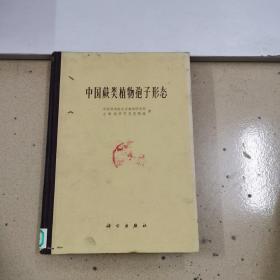 中国蕨类植物孢子形态