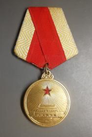 50年代解放奖章!